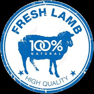 lamb-big